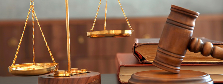 Appellate Litigation Attorney